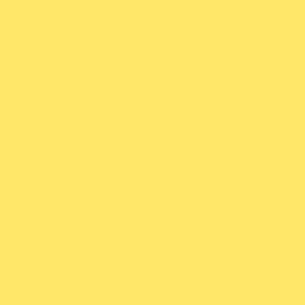 BLK1010 Black Montana Black 600ml Easter Yellow EAN4048500282638
