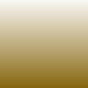 BLKGoldchrome Black Montana Black 600ml Goldchrome EAN4048500298738