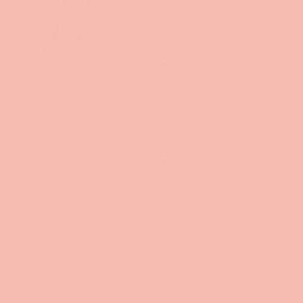 CL2100 Shrimp Pastel EAN4048500283604